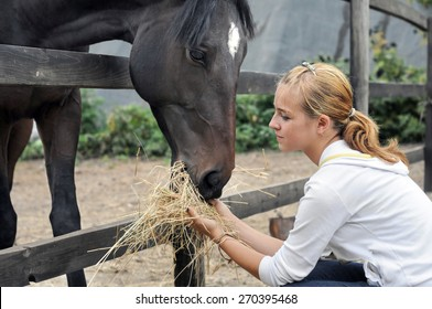 teenage girl feeding horse in the farm