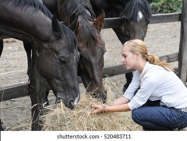 teenage girl feeds horse in the farm