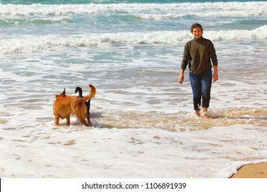 Teenage girl with her dogs on the beach