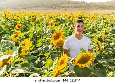 Teenager Boy in a Sunflowers Field