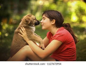 teenager girl hug puppy shepherd dog close up photo on green garden background