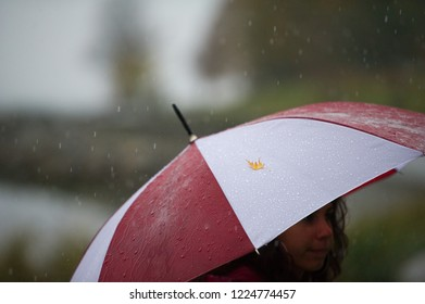 Teenager holding a red and white umbrella under the rain in Vancouver. A yellow autumn leaf is on the umbrella.