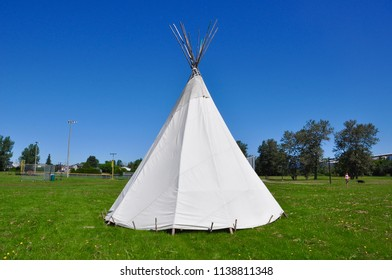 Teepee standing in a park in a sunny day