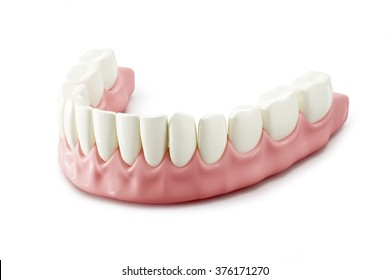 Teeth. 3D illustration on white background