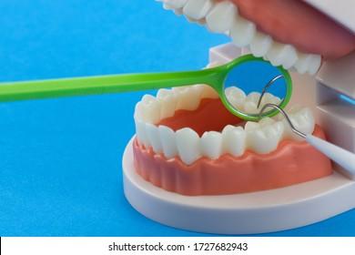 Zähne und Zahnspiegel, Symbol Foto von Prothesen, Diagnose und Nachahmung, Mundspiegel, Skalierer.Erziehungsmodell der Mundhöhle mit den Zähnen auf blauem Hintergrund.
