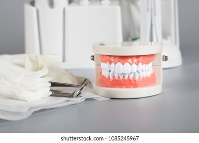 Teeth and jaw model. Other dentistry tools in the background.