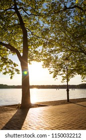 Tegel Lake, Lakeshore in the Afternoon Sun in Berlin Germany