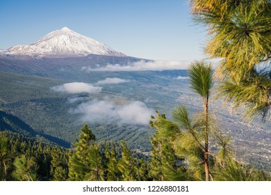 Teide mountain, Tenerife. Amazing mountain in the middle of the island. Best tourist attraction of Canary Islands.