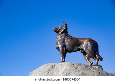Tekapo, New Zealand, March 11, 2016: Bronze statue of a New Zealand Collie sheepdog, by sculptor Innes Elliott, Kaikoura, on the edge of Lake Tekapo to commemorate the sheepdogs used in this area