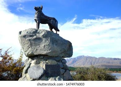 TEKAPO, NEW ZEALAND, MAY 10, 2014: Statue of a New Zealand Collie sheepdog near Lake Tekapo.