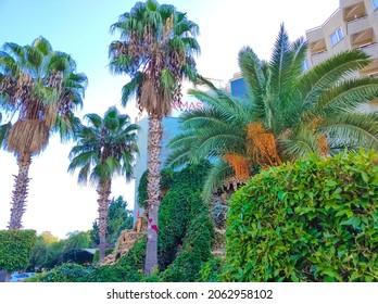 Tekirova, Antalya, Turkey - May 11, 2021: View of Armas Kaplan Paradise 5 stars All Inclusive Concept