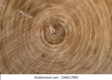 tekstura drewna, naturalna struktura - Shutterstock ID 1348117805
