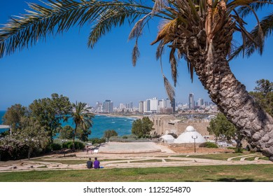 Tel Aviv, Israel - april 30, 2015: Palm tree in the gardens of the historic Jaffa district and view of the coast and skyscraper line of the city