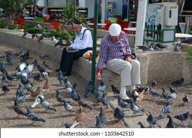 a6abe76d717b2e TEL AVIV ISRAEL NOV 04 2016  Old man feed pigeons downtown Tel Aviv. Ever