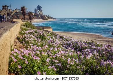 Tel Aviv promenade stretches over 14 kilometers from Herzliya to the end of Jaffa promenade, near Bat Yam
