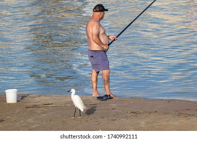 Tel-Aviv, Israel - May 22nd, 2020: A fisherman befriends a brazen little egret (Egretta garzetta) who patiently waits by his side for his next catch