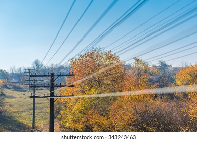 Telegraph wires passing through the frame under blue sky in autumn/Passing through/Lots of wires