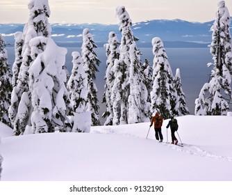 Telemark skiers