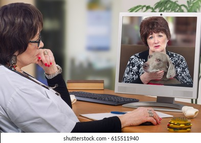 Telemedicine veterinarian provides a diagnosis and advice for weimaraner dog on computer monitor. Sitting at the desk virtual vet looks at pet with owner attentively. Horizontal mid-shot