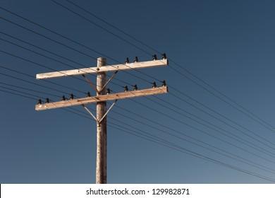 Telephone pole and clear blue sky
