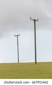 Telephone poles in yellow field