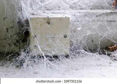 Telephone socket covered in cobwebs unused for years.