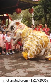 TEMANGGUNG,  CENTRAL JAVA, INDONESIA - FEB 14, 2017 :  Barongsai performance, for the introduction of culture from an early age. and also as teaching tolerance..
