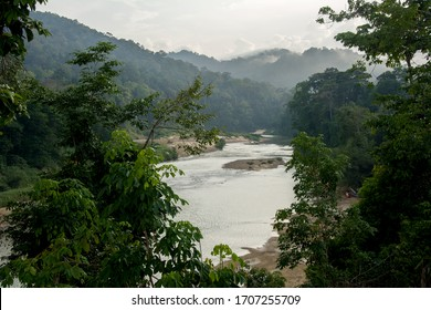 Tembeling river flowing through lush green misty tropical rainforest of Taman Negara National Park, Malaysia - morning mist in the oldes and most biodiverse forest on the Earth