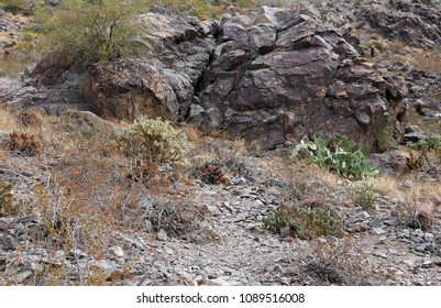 Tempe, AZ, USA: March 24, 2018: Hohokam Indian petroglyphs at Hayden Butte
