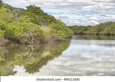 Tempisque River, Palo Verde National Park, Costa Rica