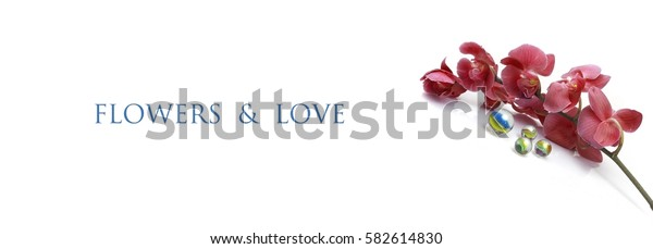 Template of horizontal banner with flower on a white background