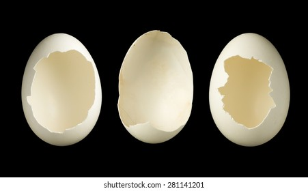Template image of three open empty eggs, good for photoshopping babies or any objects in it