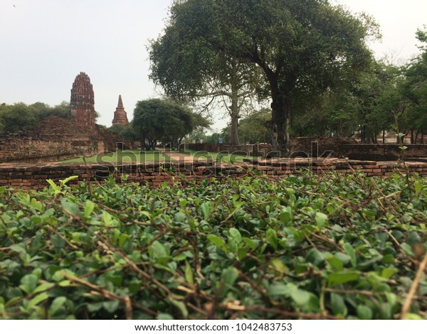 Temple at Ayutthaya,Thailand