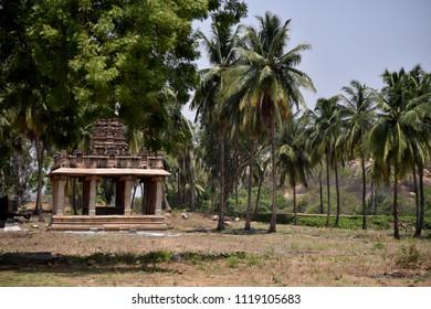 Temple - coconut trees - village