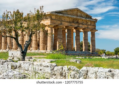 Temple of Hera II (also erroneously called the Temple of Neptune or of Poseidon, ancient Greek temple in the Doric order in Poseidonia (Paestum), Campania, Italy