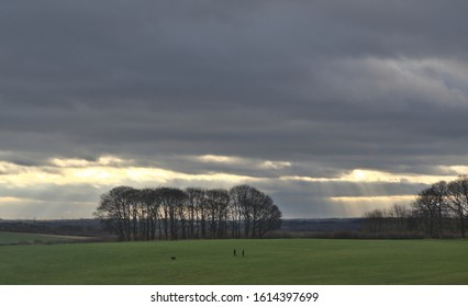 Temple Newsam, Leeds, West Yorkshire, England, Britain, January 2020, couple with dog in distance walking across field with trees and crepuscular rays
