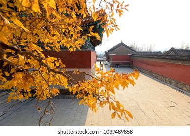 temple scenery in autumn, China