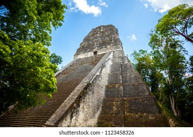 Temple V stands south of the Central Acropolis and is the mortuary pyramid. It has been dated to about AD 700, in the Late Classic period and is the second tallest structure in Tikal, Guatemala.