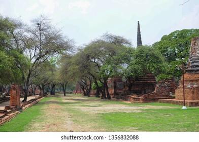 Temple: Wat Phra Si Sanphet at Phra Nakhon Si Ayutthaya, Thailand, Ancient, Traditional, Park