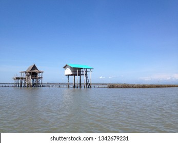 Temporary water shelter in mangrove forest. fisherman home. Oyster fisheries in mangrove forest.