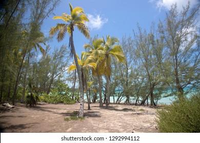 Ten Bay beach, Eleuthera island, Bahamas.