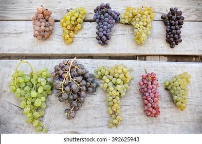 Ten Varieties Of Grapes On The Bank in Cappadocia, Turkey.