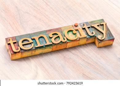 tenacity word abstract in letterpress wood type printing blocks