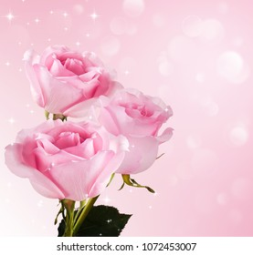 tender bouquet of roses on a beautiful background