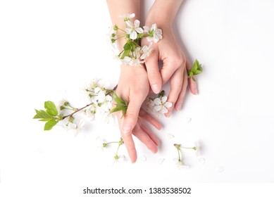 Tenderness femininity woman hand and white spring flowers close up.