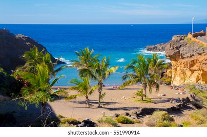 Tenerife Callao Salvaje sandy beach with palms