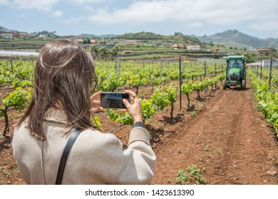 Tenerife, Canary islands - april 22, 2019: Young girl photographing with a mobile a tractor working on a crop of grapes in the fields of the village of Tegueste
