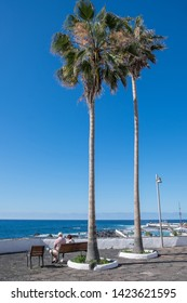 Tenerife, Canary islands - april 22, 2019: Tourists sitting under slender palms off the coast of the tourist city of Puerto de la Cruz, north of the island