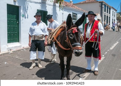 Tenerife, Canary islands - april 25, 2010: Peasants dressed in traditional costumes with a donkey during the festivities of the village of Tegueste