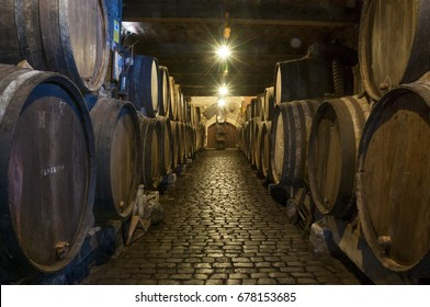 TENERIFE, CANARY ISLANDS - AUGUST 13, 2010: View with light diffracted from the interior of a cellar with wooden barrels, in the north of the island